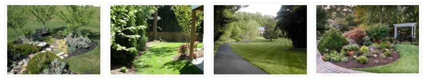 spring-lawn-care-tips